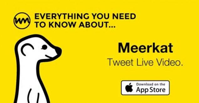 Meerkat uygulaması nedir? Meerkat app nasıl kullanılır?