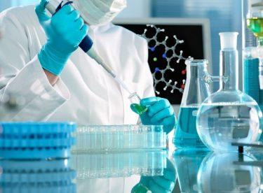 Biyokimya Laboratuvarı Stajında ne öğrenilir?