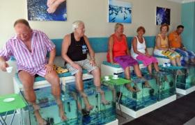 İhtiyoterapi nedir? İhtiyoterapi tedavisi? Doktor balıkla tedavi