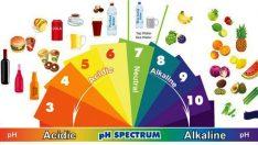 Alkali diyeti 2015, Alkali diyeti yöntemleri 2015