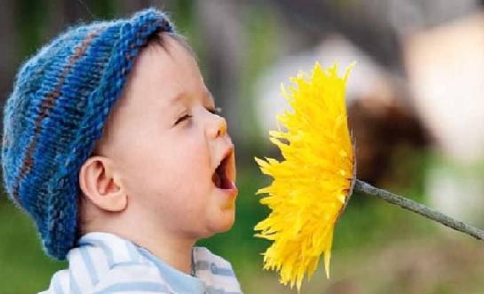Bahar alerjisine ne iyi gelir