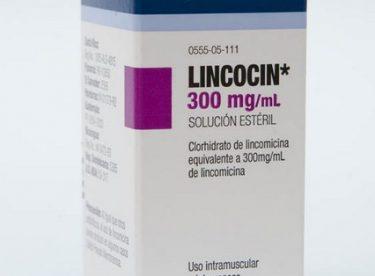 Lincocin nedir, Lincocin ne için kullanılır?