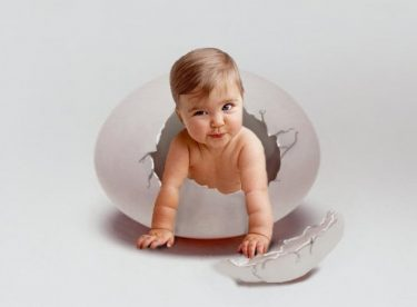 Yumurta, Sperm, Embriyo donasyonu ve fiyatları 2015-2016